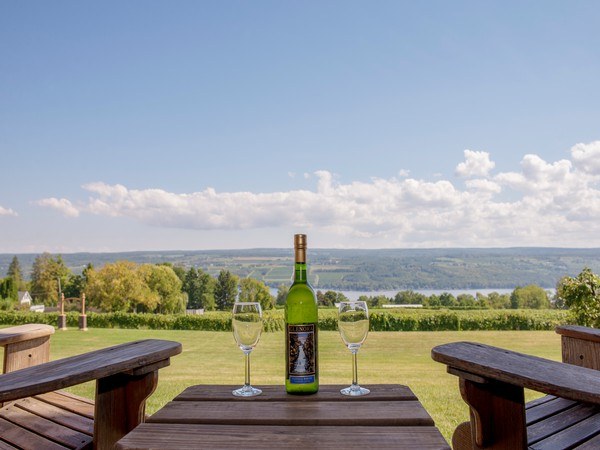 two adirondack chairs, two glasses of wine, and a bottle, all overlooking the vineyard and lake from a private patio