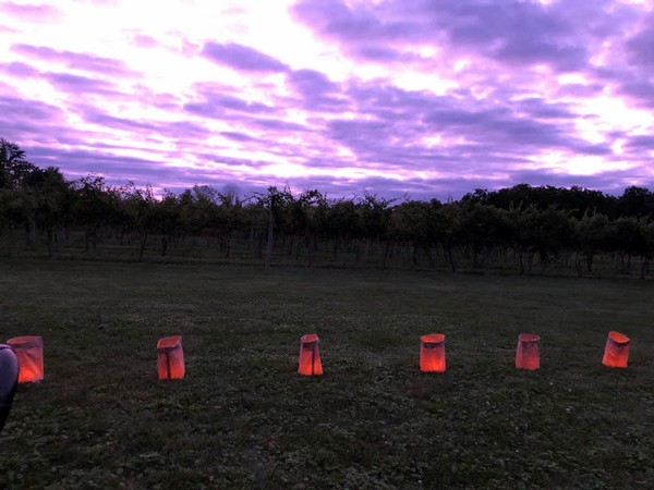 A gorgeous purple sky and paper luminaries captured outside of Knapp