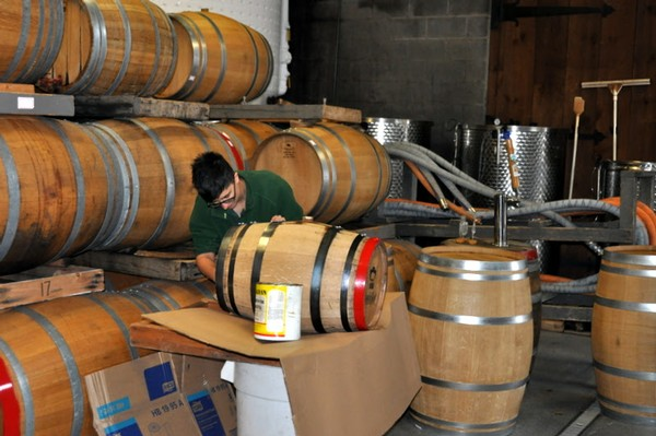 Associate winemaker Rachel preparing an oak barrel for our nouveau wine.