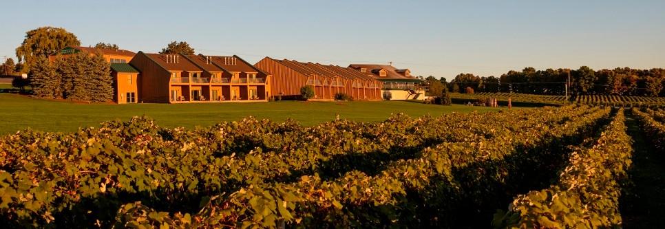 & Glenora Wine Cellars - Finger Lakes Winery - Online Wine Store